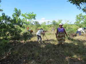 Filming Madagascar