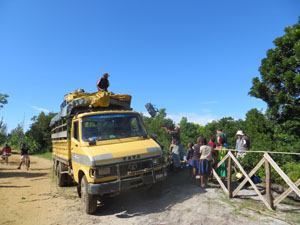 Cameon Madagascar